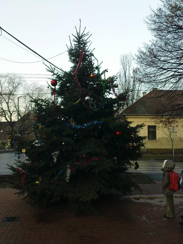 A 2011-es karácsonyfa a főtéren