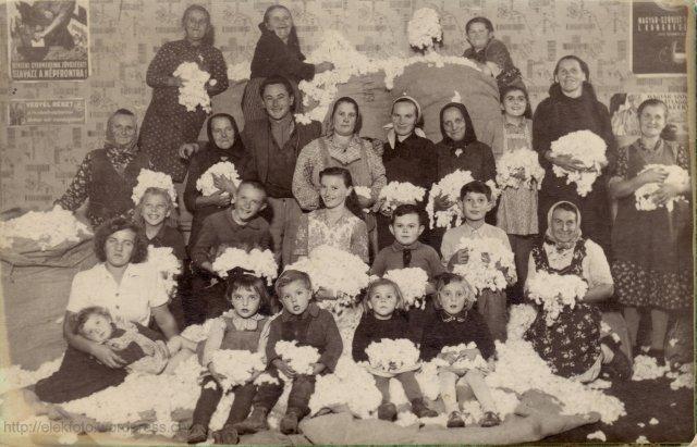 Gyapotválogatás a József Attila T.Sz.Cs.-ben 1950-51 telén. Balról jobbra a képen: Tóthné, Szecsenkóné, ? Jóska, Bottó Péterné, Id. Elekesné, az agronómus, Himáné, Csatóné, Vargáné, Bottó Mária, Hajdúné, Tóthné, Elekes Kati, Rocskár Jani, Ifj. Elekesné, Hima Sanyi, Elekes Pali, Szvettné, Pénzesné, ölében kislánya, Pénzes Gizike, Tóthné két unokája, és Ifj. Elekesné kislánya, valamint egy ismeretlen kisunoka.