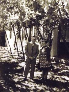 A Spitzer házaspár( ?) szőlőlugasa az  1970-esévekben