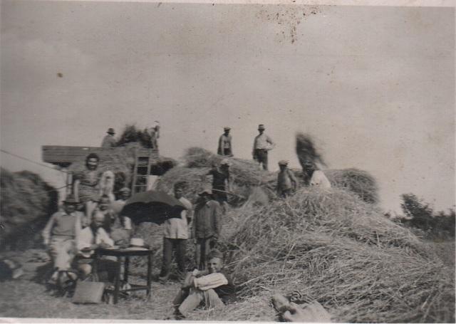 Aratás, a gabona  átadása/ átvétele